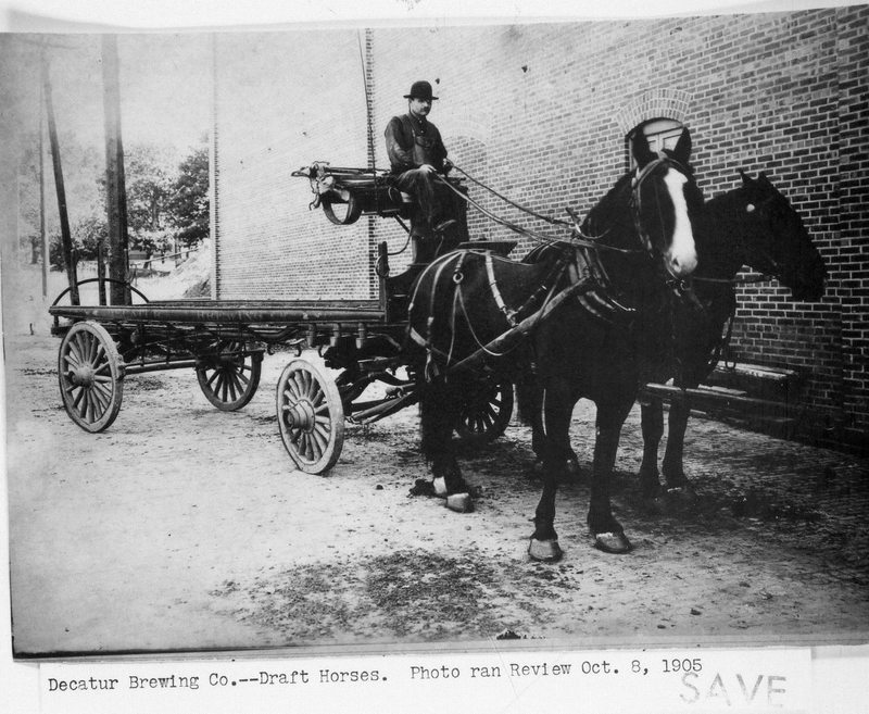 BS66-DRAFT HORSES _1905.jpg