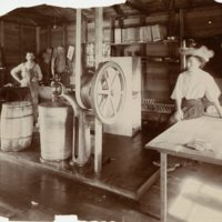 BS128-HIGH_ICE_CREAM_FACTORY-1, C1906.jpg