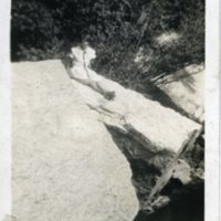 BF71-Lucille_on_a_rock073.jpg