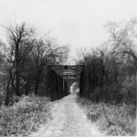 BR12-County_Line_Bridge_1912_Sleet_on_trees.jpg