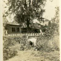 HH48-House and person in garden ,no date356.jpg