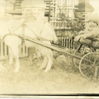 BF149-baby_in_a_goat_pulled_cart151.jpg